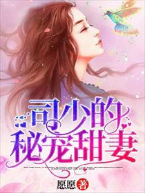 司少的秘寵甜妻小說全本閱讀