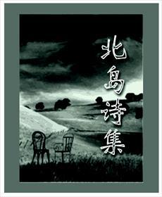 北岛诗集小说全本阅读
