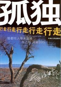 孤独行走小说全本阅读
