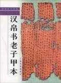老子帛书小说全本阅读