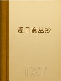 爱日斋丛抄小说全本阅读