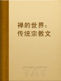 禅的世界:传统宗教文化丛书小说全本阅读