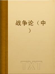 战争论(中)小说全本阅读