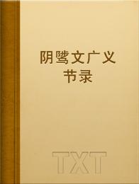 阴骘文广义节录小说全本阅读