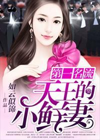 第一名流:天王的小鲜妻小说全本阅读
