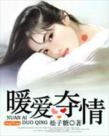 暖爱夺情小说全本阅读