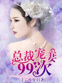 总裁宠妻99次小说全本阅读