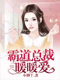 霸道总裁暖暖爱小说全本阅读