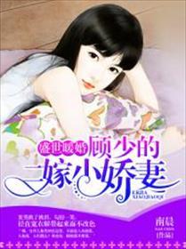 盛世暖婚:顾少的二嫁小娇妻小说全本阅读
