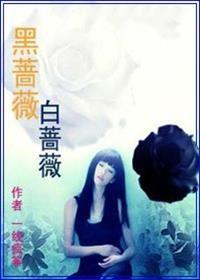 黑蔷薇白蔷薇小说全本阅读