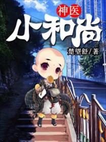 神医小和尚小说全本阅读