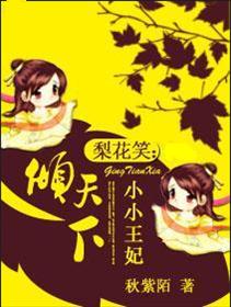 梨花笑:小小王妃倾天下小说全本阅读