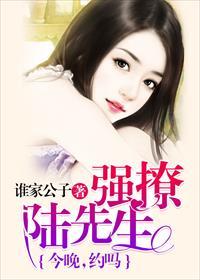 强撩陆先生:今晚,约吗?小说全本阅读