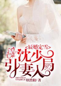 辰婚定雪:沈少引妻入局小说全本阅读