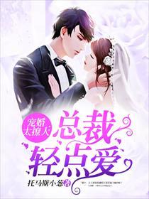 宠婚太撩人:总裁轻点爱小说全本阅读