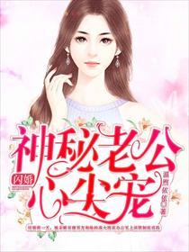 闪婚:神秘老公心尖宠小说全本阅读