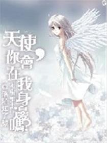 天使,你会在我身边吗?小说全本阅读