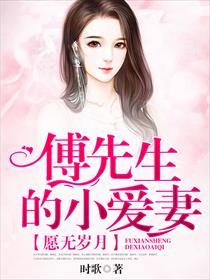 愿无岁月:傅先生的小爱妻小说全本阅读