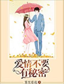 爱情不要有秘密小说全本阅读