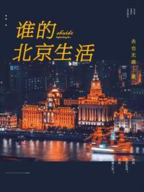 谁的北京生活小说全本阅读