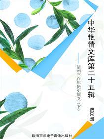 中华艳情文库第二十五辑——清朝三百年艳史演义(下)小说全本阅读