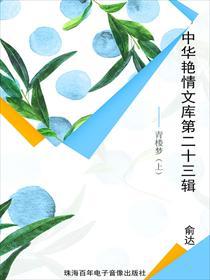 中华艳情文库第二十三辑——青楼梦(上)小说全本阅读