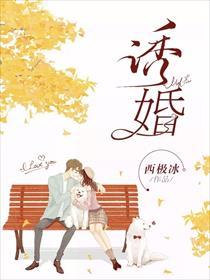诱婚小说全本阅读