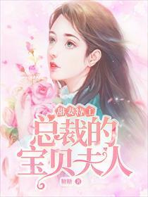 甜妻特工:总裁的宝贝夫人小说全本阅读
