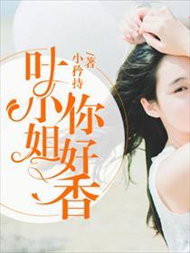 叶小姐,你好香小说全本阅读