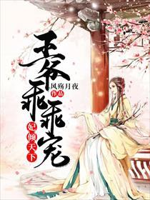妃倾天下:王爷乖乖宠小说全本阅读