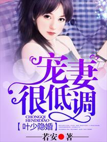叶少隐婚,宠妻很低调小说全本阅读